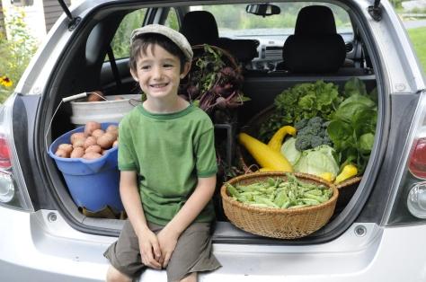 farmer boy 001